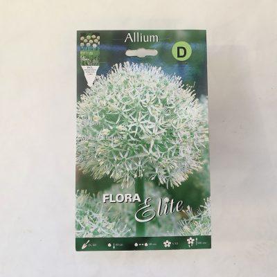 alium jesen 1