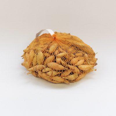 cebulcek belokranjka